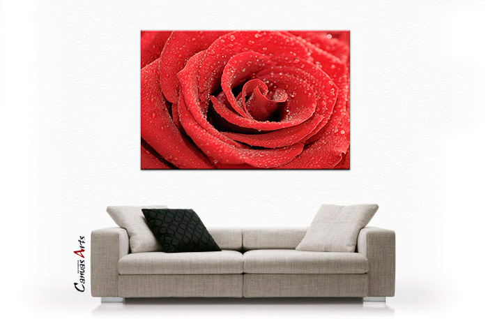 rote rose leinwand bild auf keilrahmen bilder wandbild wet red rose ebay. Black Bedroom Furniture Sets. Home Design Ideas
