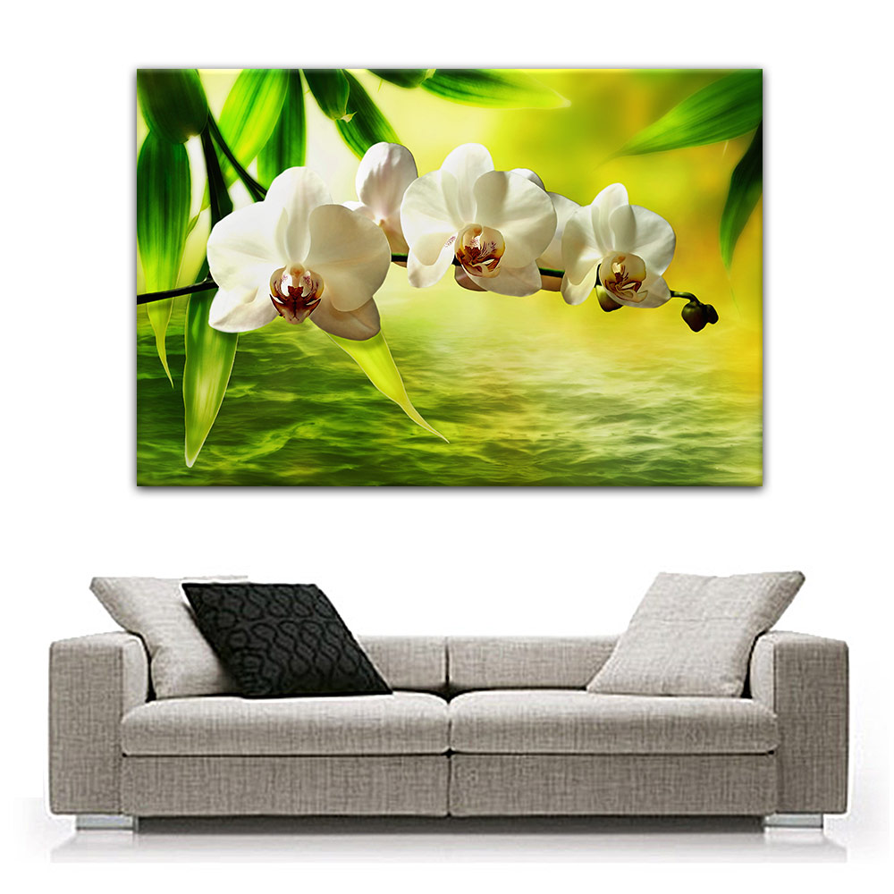 orchidee leinwand auf keilrahmen bild poster wandbild bilder ebay. Black Bedroom Furniture Sets. Home Design Ideas